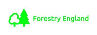 FE_Primary_Logo_Green (2)